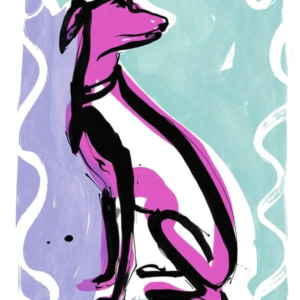 Whippet - Illustration Print