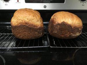 手作りパンはおいしい、イースト超大事