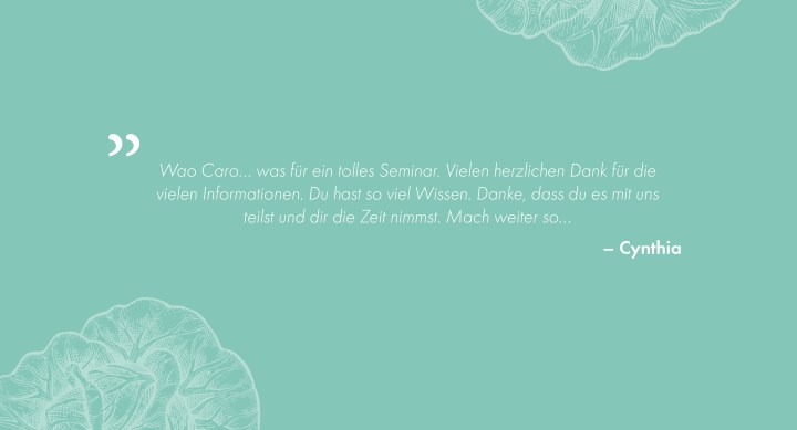 Webinar, Online-Seminar, eat well feel better, Ernährungsberatung, Ernährungsexpertin, Ernährungscoach, Caro Kotke