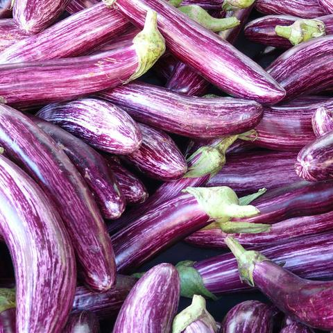 Pile of purple long eggplant grown in the Caribbean, used in the 2019 USVI Charter Yacht Show Chefs' Competition