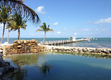 Dock with palm trees at Cheeca Lodge and Spa in Upper Mattecumbe Key, Florida