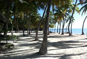Moorings Village beach on Islamorada in the Florida Keys Photo©2020SarahNottage