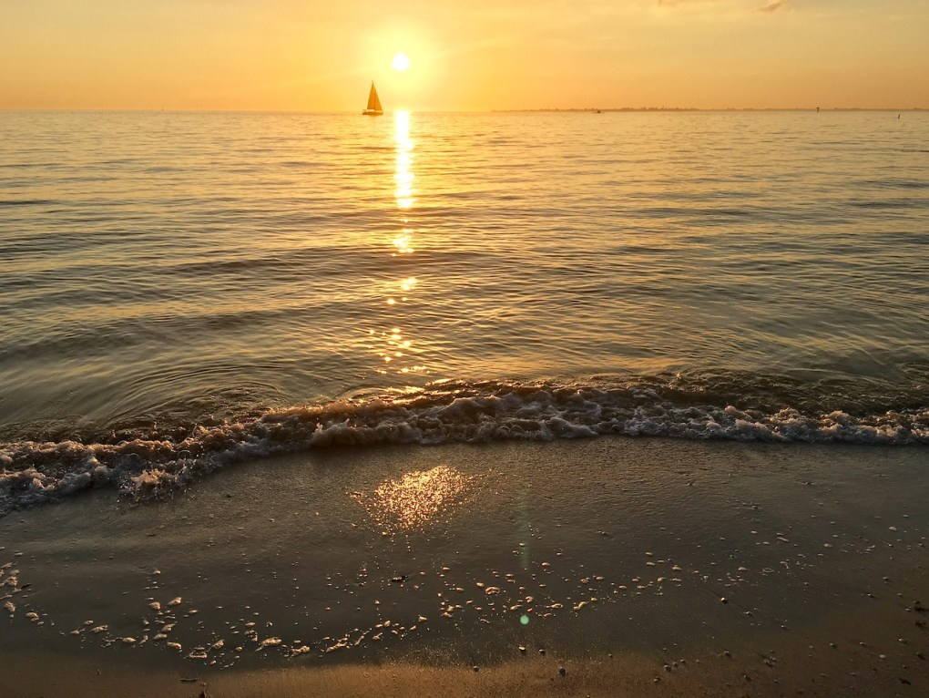 Sailing yacht on the horizon in a golden sunset in Florida. Photo©2020CarolKent