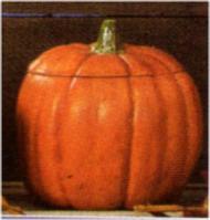 Scioto 0378 medium small pumpkin
