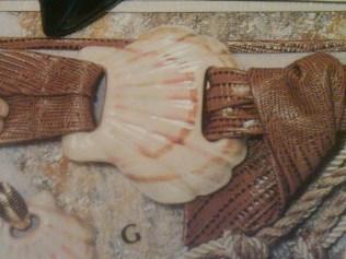 belt buckle shell