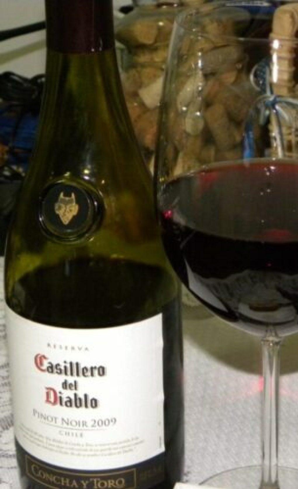 A melhor bebida para o seu signo pinot noir vinho