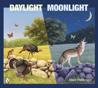 Review: Daylight Moonlight by Matt Patterson