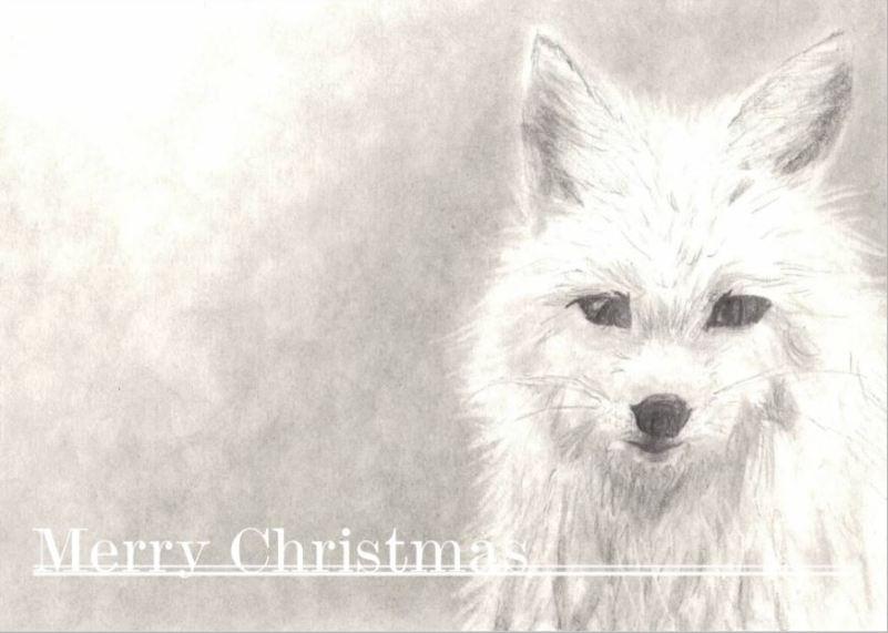 Christmas care