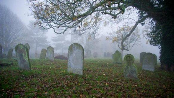 764568-graveyard