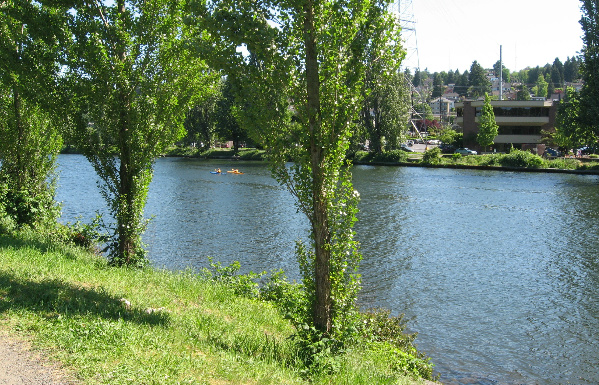 Fremont Ship Canal