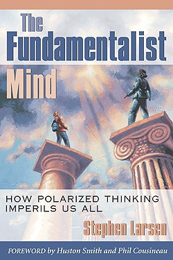 Stephen Larsen The Fundamentalist Mind