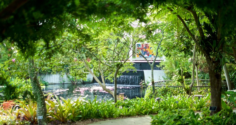 Naples Botanical Garden will reopen on October 1st with free admission