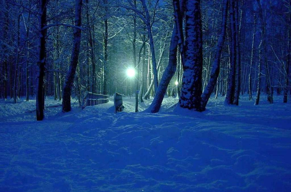 Finding The Light In The Era Of Permanent Winter Solstice, By Carolyn Baker