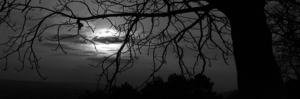 A New Dark Age Looms, By William B. Gail