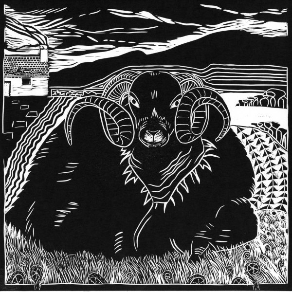 Image of 'Scottish Sheep' linocut by Carolyn Murphy