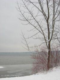 lake this morning