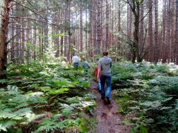 Hiking the AuSable Trail