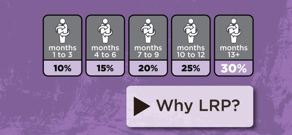 Loyalty & Shipping Rewards Program