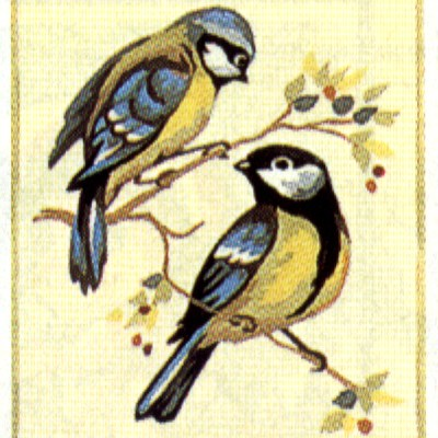 0134_kis madarak 1