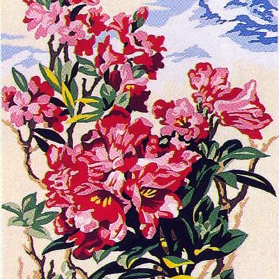 0176_virág2
