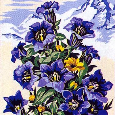 0178_virág4