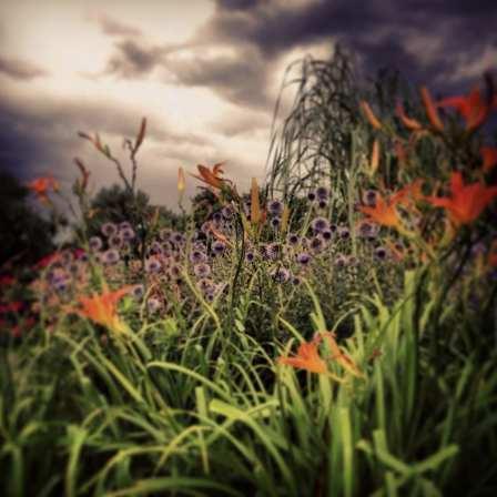 washington park in denver colorado