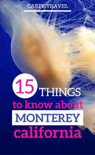 There's a lot of things to do in Monterey CA, but having a little background on the area brings more color and context to this little California beach town. Here are a few fun facts you can quiz your friends or kids on the next time you're visiting.