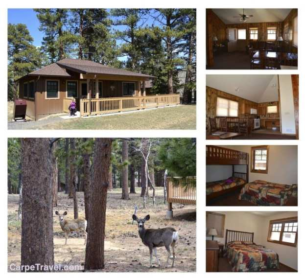 Cabins at YMCA of the Rockies Estes Park Center