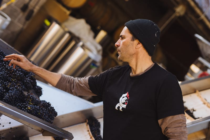 Interview with the winemaker of Grochau Cellars, one of the must visit Willamette Valley wineries
