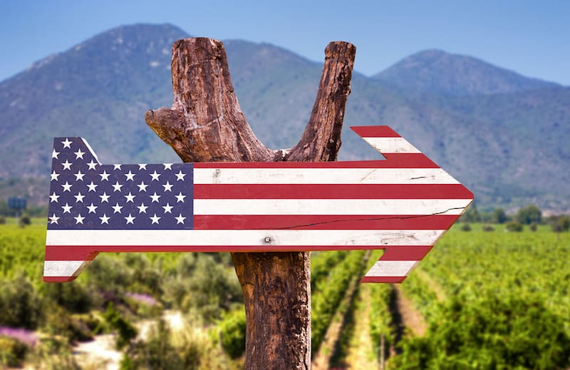 From A to Z: Top Wine Festivals in Every State Not to Miss