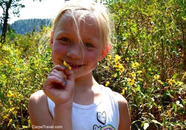 Beyond the vines in Colorado Springs…outdoor adventures await!