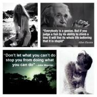 Everybody is a genius - Albert Einstein