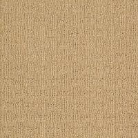 Berber/Loop Carpet Flooring  Shaw Floors Caraban ...