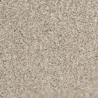 Textured Carpet Flooring  Shaw SILVER TEXTURE TONAL ...
