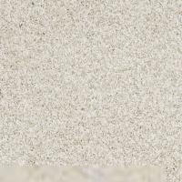 Textured Carpet Flooring  Shaw DENALI TEXTURE   Surrey ...