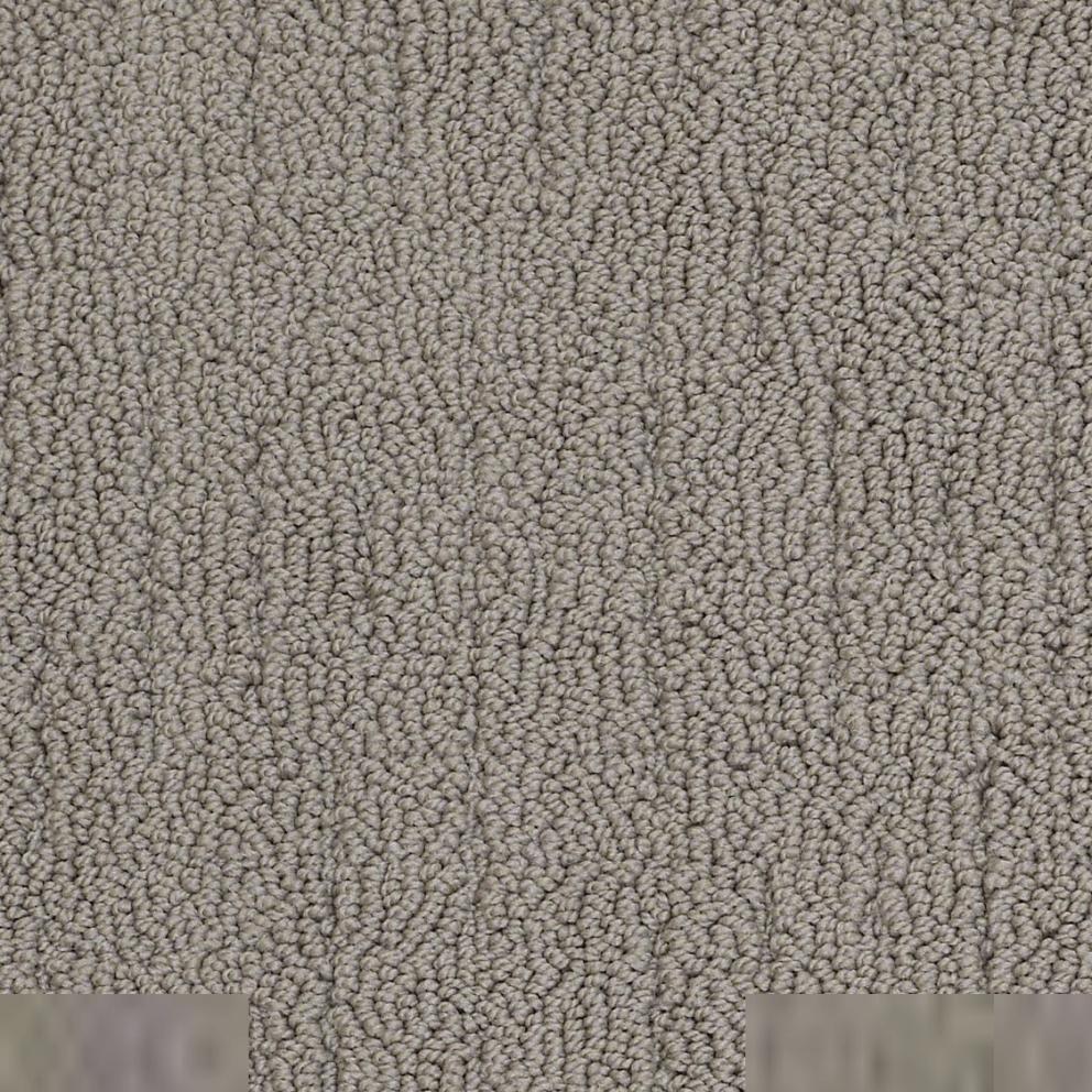 Berber/Loop Carpet Flooring  Shaw QUITE DURABLE
