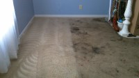 Before and After American Carpet Cleaners - Greenville ...