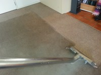 Hot Water Extraction Carpet Cleaner - Carpet Vidalondon
