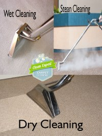 Why Carpet Cleaning is important To Us?  Carpet Cleaning ...