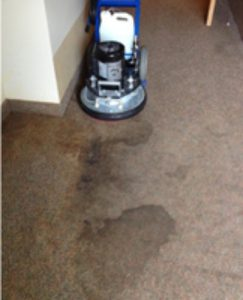 Commercial Carpet cleaning Joplin, MO before