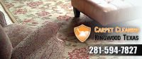Carpet Cleaning Kingwood Texas - Furniture, Upholstery ...