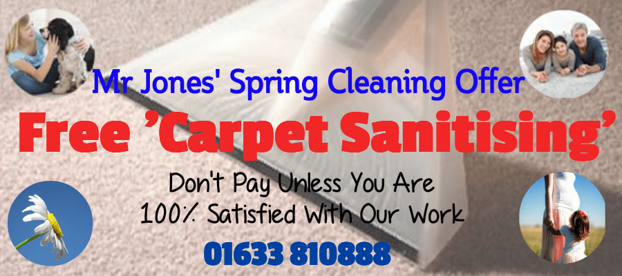 Spring Carpet Cleaning Offer