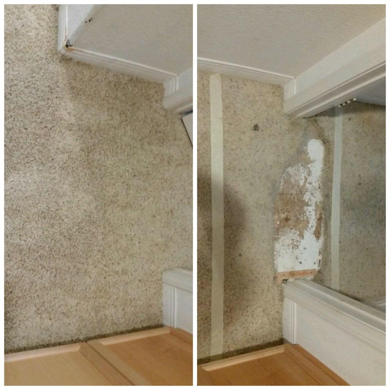 Carpet Repair Patch