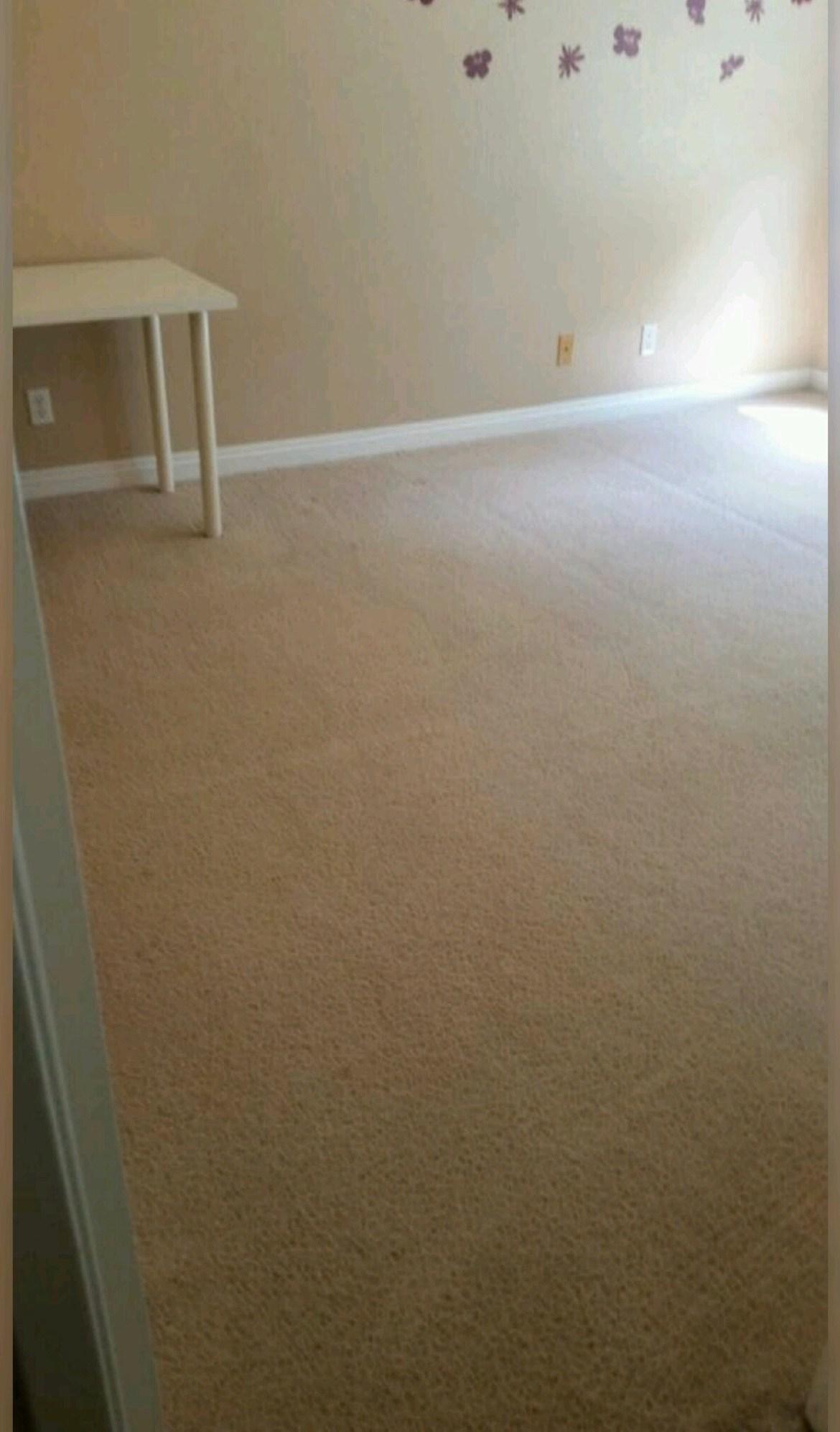 Carpet Stretching2