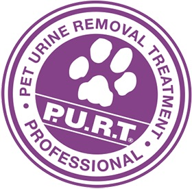 Pet Odor Removal Chem-Dry