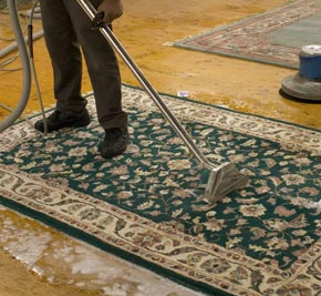 carpetcleaningpotomac com