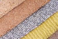 Leesburg Carpet Cleaners - Professional Rug & Upholstery ...