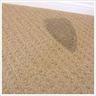 Carpet Burn Mark Repair