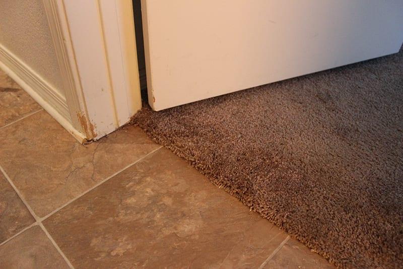 carpet repair mesa don t replace it