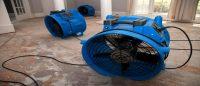 Pantego Bay TX Carpet Cleaning Services Carpet Service Express